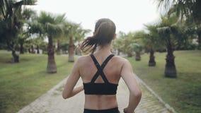 Konditionjoggerspring på tropiskt parkerar jogga genomkörare för kondition lager videofilmer