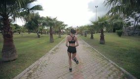 Konditionjoggerspring på tropiskt parkerar jogga genomkörare för kondition arkivfilmer