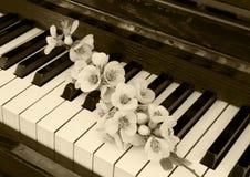 Kondolencje karta - kwiat na pianinie Zdjęcia Stock