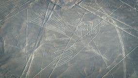 Kondor, wie im Nasca gesehen zeichnet, Nazca, Peru Stockfotografie