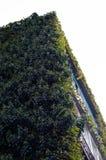 Kondygnacja dom zakrywa z zielonymi roślinami fotografia royalty free
