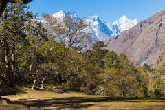 Kongde Ri mountain ridge, rhododendron forest trees. Stock Image