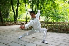 kongFu cinese Fotografie Stock Libere da Diritti