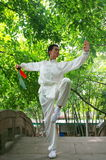 kongFu cinese Fotografie Stock