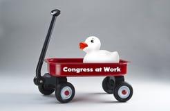 Kongres przy pracą fotografia royalty free