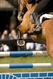 konia 011 jumping Zdjęcia Royalty Free