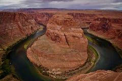 Konia Arizona Kalifornia obuwiana przegięta strona zdjęcie royalty free