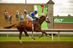 Konia i dżokeja cwałowania past ekran Obraz Stock