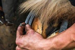 Konia kopyto kuje konowałem, blacksmith/ Obrazy Royalty Free