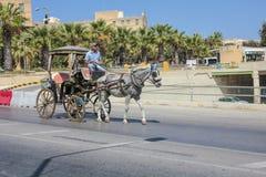 Konia powozowy jeździec w Valletta na jawnej ulicie Zdjęcie Royalty Free