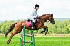 konia skoków jeźdza przedstawienie Obrazy Royalty Free