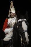 Konia Strażnik Obrazy Royalty Free