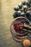 Koniaków winogrona i szkło Zdjęcie Stock
