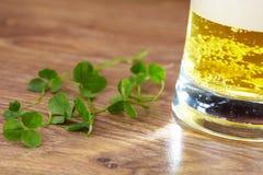 Koniczyna i piwo Obrazy Stock