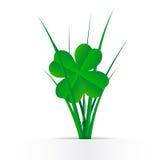 Koniczyna liście w trawie Fotografia Stock