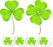 koniczynowy dzień zieleni Patrick s st ilustracji