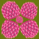 Koniczynowy koloru set, szczęście symbol, abstrakcjonistyczny koniczynowy kwiat ilustracja wektor