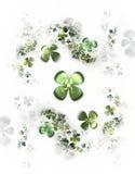 koniczyny cztery leafed shamrock biel royalty ilustracja