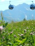 Koniczyny pole w górach Zdjęcia Stock