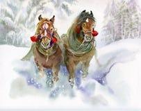 Konie biega w zimie Zdjęcia Royalty Free