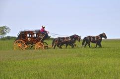 Konie ciągnie stagecoach obrazy royalty free