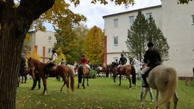 konie i jeźdzowie na Kosice uniwersytecie na Slovakia fotografia stock