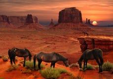 Konie przy John Ford ` s punktem Przegapiają w Pomnikowym Dolinnym Plemiennym parku, Arizona usa Zdjęcie Stock