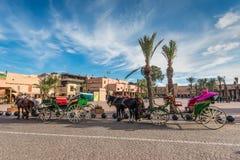 Konie rysujący frachty dla turystów, Maroko, Afryka Zdjęcia Royalty Free