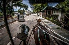 Konie Vigan Ilocos Sura Zdjęcia Stock