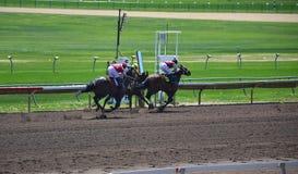 Konie wyścigowi i dżokeje galopujący zdjęcie royalty free