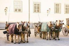 Konie z furgonami w zimie na głównym placu Salzburg w Austria Rozrywka turyści, jedzie wakacje obrazy stock