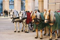 Konie z furgonami w zimie na głównym placu Salzburg w Austria Rozrywka turyści, jedzie wakacje obraz royalty free