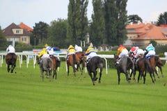 Koniec wyścigi konny w Praga zdjęcie stock