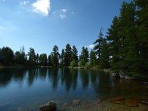 Koniferenbäume und Gebirgssee Montenegro, Dinaric-Alpen lizenzfreie stockbilder
