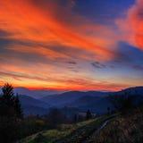Koniferenwald auf einem steilen Berghang am Abend Stockbild