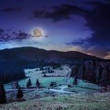 Koniferenwald auf einem steilen Berghang nachts Lizenzfreies Stockfoto