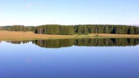 Koniferenwald wird über die glatte Oberfläche des Flusses nachgedacht stock video