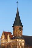Konigsberg Cathedral Stock Photos