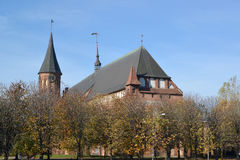 Konigsberg cathedral in the fall. Kaliningrad, Russia Stock Image