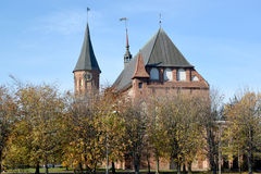 Konigsberg cathedral in the fall. Kaliningrad, Russia Stock Photo