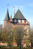 Konigsberg cathedral in the fall. Kaliningrad, Russia Stock Photos
