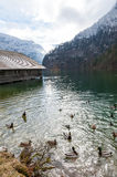 Konigsee lake. View from Konigsee lake, Berchtesgaden, Germany stock photography