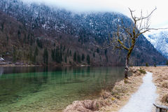 Konigsee lake. View from Konigsee lake, Berchtesgaden, Germany in the winter royalty free stock images