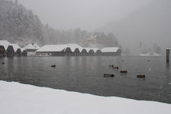 Konigssee lake at blizzard in winter time. Berchtesgaden, Bavaria, Germany. Royalty Free Stock Photo