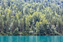 Konigssee near German Berchtesgaden surrounded with trees stock photos
