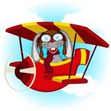 Konijn die op vliegtuig vliegen Stock Afbeeldingen