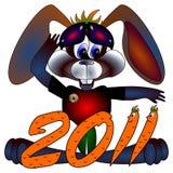 Konijn een symbool 2011 Chinese nieuwe jaren Royalty-vrije Stock Afbeeldingen