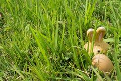 Konijn en Ei - Pasen Stock Afbeeldingen