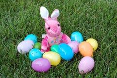 Konijn en eieren Stock Afbeeldingen