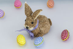 Konijn, konijntje, Kleurende eieren, geschilderde, blauwe gekleurde achtergrond, groen, geel, rood, oranje, Royalty-vrije Stock Afbeelding